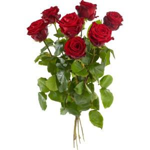 Rode rozen los