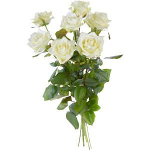 Witte rozen los